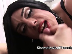 two-shemales-and-a-guy-sucking-cocks